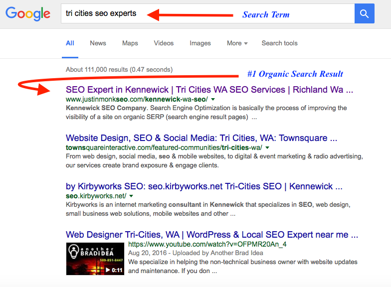 Tri Cities SEO Experts Search